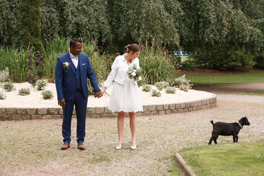 couple de mariés avec invité surprise chèvre